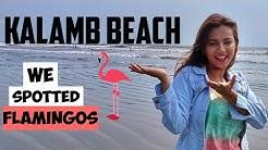 Kalamb Beach VASAI | FLAMINGOS SPOTTED!!