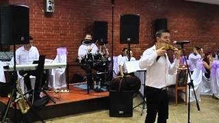 Ovidiu Taran - live la nunta (nai)