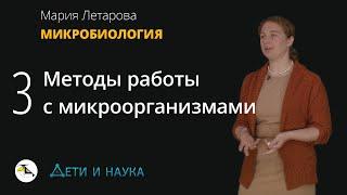 Методы работы с микроорганизмами.  Мария Летарова - Микробиология #3