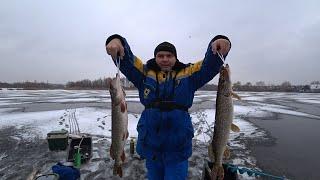 Первый лёд 2020 21 на озере Щука на жерлицы вечером ночью и утром зимняярыбалка подводное видео