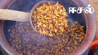 Download Eesal | Cooking Eating Winged TERMITES | Healthy village food | Village Cooking Channel