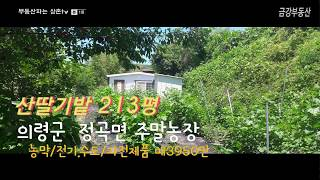 경남 의령 농막있는 주말농장 (7)