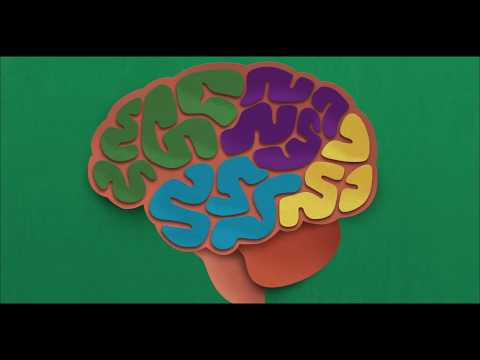 Preventing Cognitive Decline and Dementia: A Way Forward