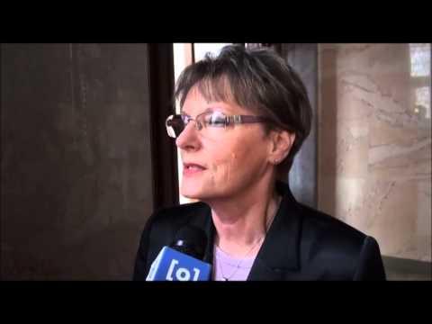 Tahó frakció a Parlamentben - 2013.02.26. - Origo