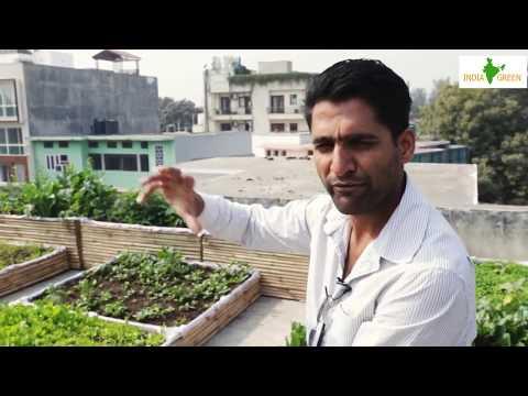 India Green Hi-Tech