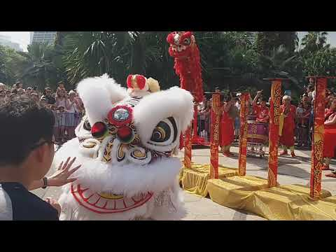 Singapore Tian Eng Lion Dance On High Pole performances at Garden By The Bay On Day 3 Of CNY 18/2/18