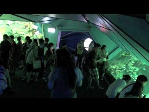 China 2011 - Episode 19 - Ocean Park