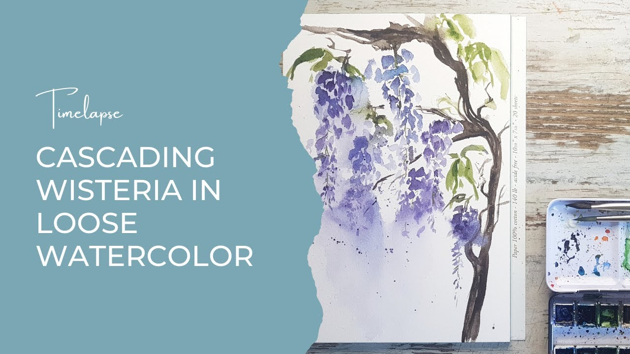 Cascading Wisteria in loose watercolor | Timelapse