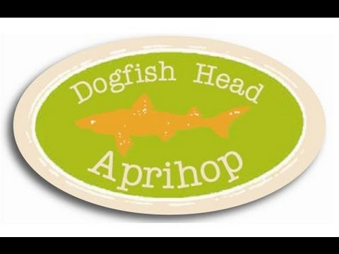 Dogfish Head Aprihop (Apricot IPA) | Beer Geek Nation Beer Reviews Episode 307