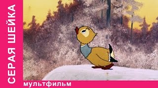 Серая Шейка. Советские мультфильмы. Союзмультфильм. StarMediaKids