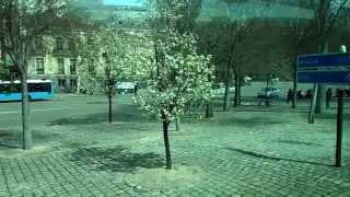 Обзорная по Мадриду(Автобусная экскурсия по Мадриду., 2013-04-29T16:48:29.000Z)