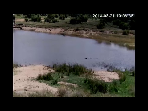 AWE South Africa  Cam