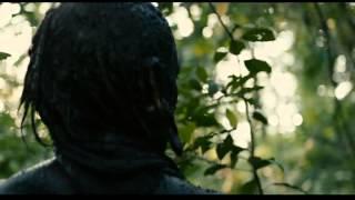 Apocalypto - The hornet's nest.