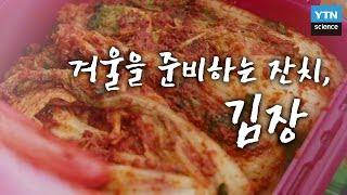 겨울을 준비하는 잔치, 김장 / YTN 사이언스