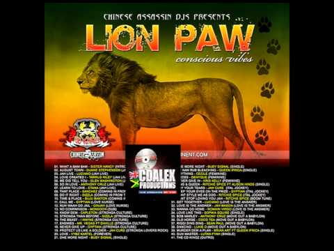 CHINESE ASSASSIN DJ'S - LION PAW 2012