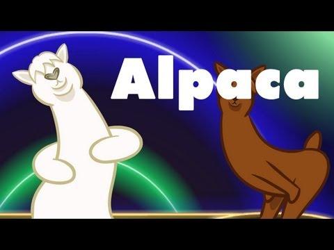 Alpaca : animated music video : MrWeebl