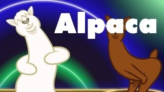 Repeat youtube video Alpaca : animated music video : MrWeebl