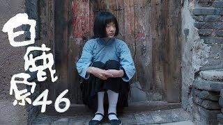 白鹿原 | White Deer 46【DVD版】(張嘉譯、秦海璐、何冰等主演)