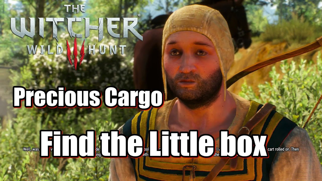 Download The Witcher 3 Wild Hunt Precious Cargo - Find the Little box