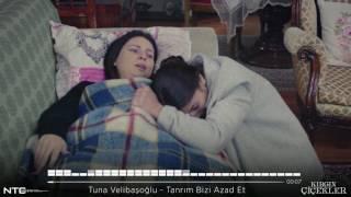 Tuna Velibaşoğlu - Tanrım Bizi Azad Et (Kırgın Çiçekler)