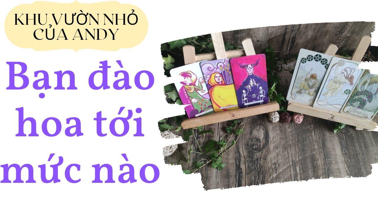 Chọn 1 tụ bài Tarot – Bạn đào hoa tới mức nào – Alo Andy