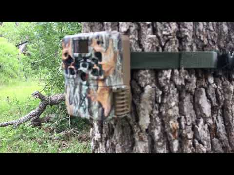 2018-browning-strike-force-extreme-trail-camera-btc-5hdx-review