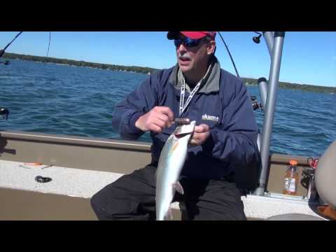 Precision Trolling with Crankbaits from YouTube · High Definition · Duration:  21 minutes 32 seconds  · 25.000+ views · uploaded on 21.05.2015 · uploaded by Fishing 411 TV