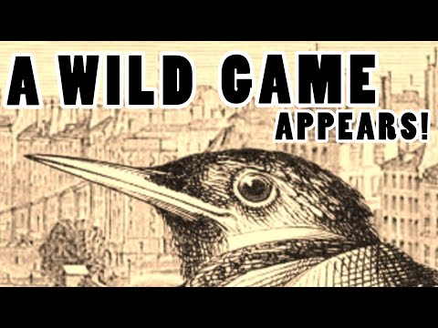 A Wild Game Appears! - Aviary Attorney