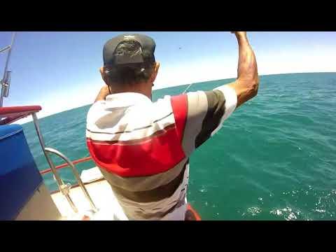 Deep Sea Fishing - Puerto Peñasco
