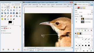 Tutorial GIMP español editar imagenes - hacer fotomontajes - recortar imagenes