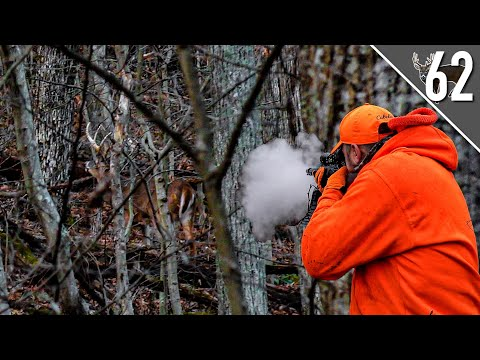 DEER DRIVES IN THE HILLS! – Ohio Muzzleloader Hunting on PUBLIC LAND!
