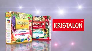 "KRISTALON - ""Je to on!"""