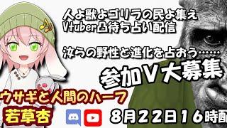 [ 新人Vtuber ]  ケイロカミオカ の タロット占い with 若草杏  [ 凸待ち ]