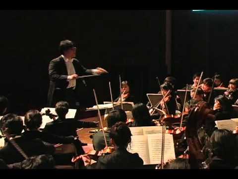 Symphony No. 6 in B minor, Op. 74, Pathétique 2. Allegro con grazia By Euphonia mp3