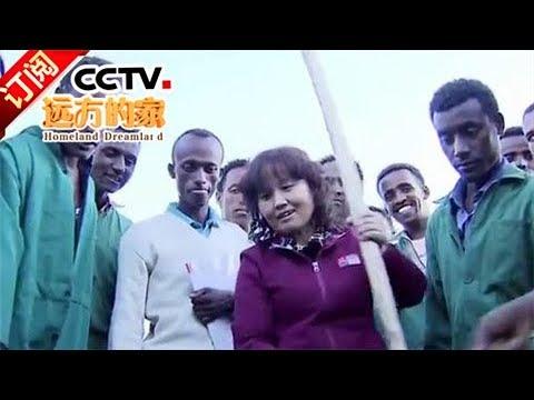 《远方的家》 20170911 一带一路(214)埃塞俄比亚 中国专家的非洲情 | CCTV-4