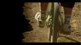 Life Cycles - Trailer Full HD
