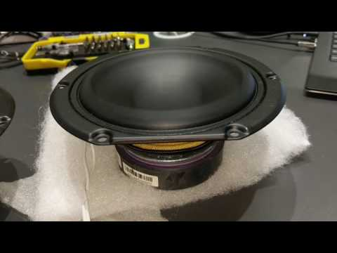 Beats Audio Dock - Peerless 5 Inch Woofer