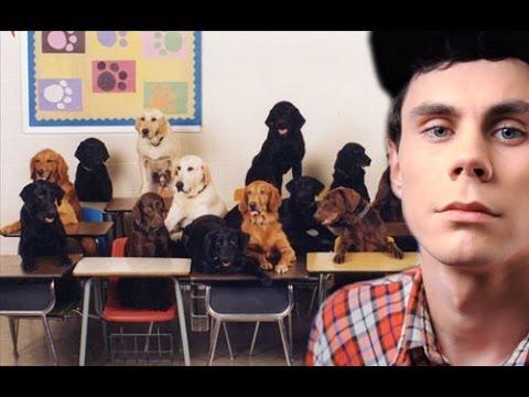 Собаки читают твои мысли — ТОПЛЕС