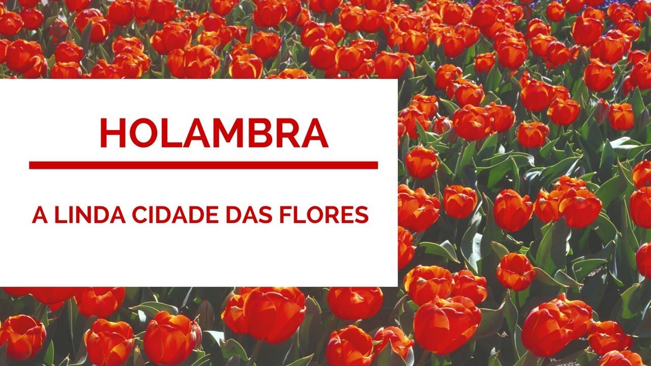 Holambra A Linda Cidade Das Flores