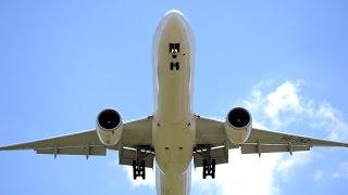 Overhead | Thai Boeing 777-3D7ER Landing Melbourne
