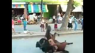 馬のバックドロップwwwwww