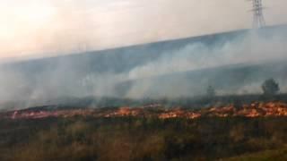 Пожар!!!(PresnyakovaSofia)