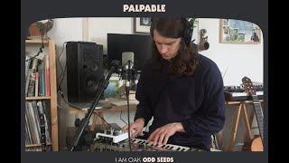 I Am Oak - Palpable (Official Video)