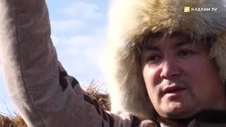 Дикие жеребцы и охота с беркутом