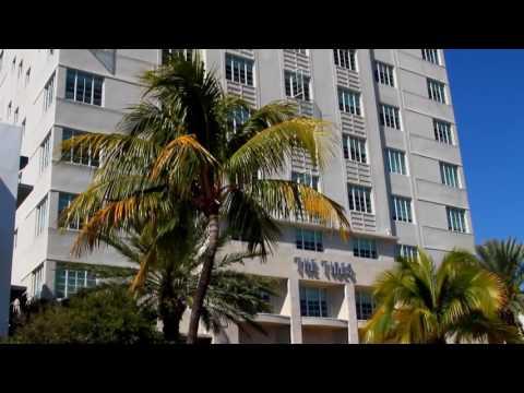 Miami Beach  Travel Guide