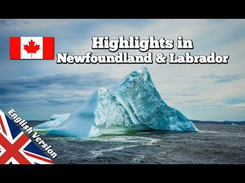 Things to do in Newfoundland & Labrador (documentary)