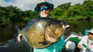 DEADLY PIRANHA Catch and Cook in the AMAZON Jungle!!! (EPIC)