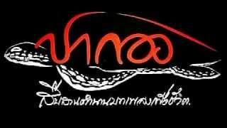 Part 2 วงปากองเพชรบุรี ณ.วัดลักษณาราม April 2015