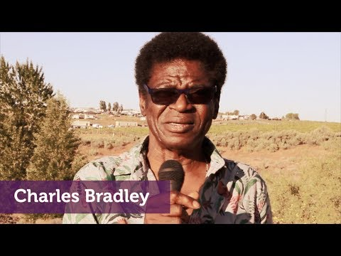 Charles Bradley feels the healing tunes @ Sasquatch! 2017