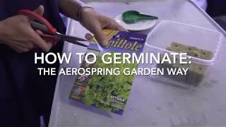 How to germinate - the Aerospring Gardens way